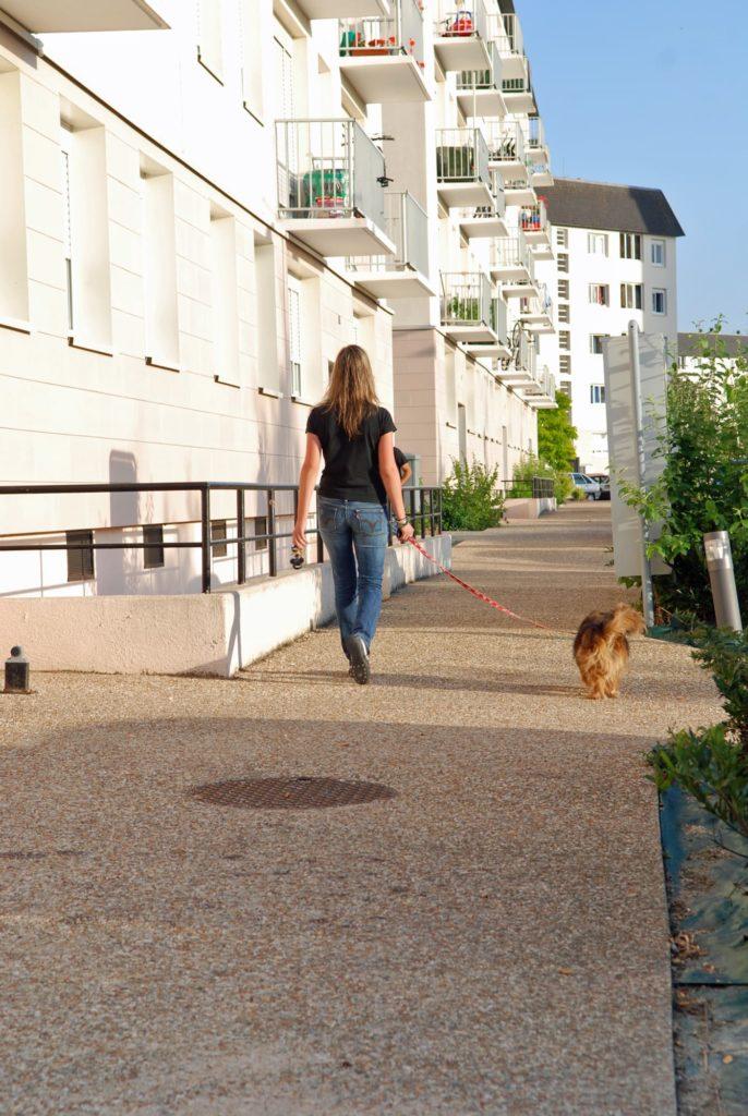 Reportage photo pour la Maison de l'Habitat à Dreux (Eure-et-Loir)